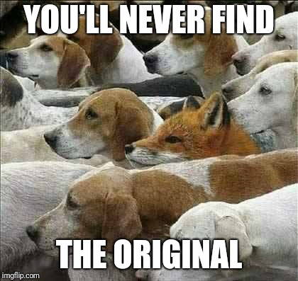Fox and Foxhounds | YOU'LL NEVER FIND THE ORIGINAL | image tagged in fox and foxhounds | made w/ Imgflip meme maker