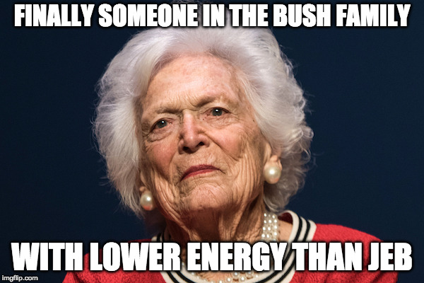 Low Energy Bushes | FINALLY SOMEONE IN THE BUSH FAMILY WITH LOWER ENERGY THAN JEB | image tagged in barbara bush,jeb bush | made w/ Imgflip meme maker