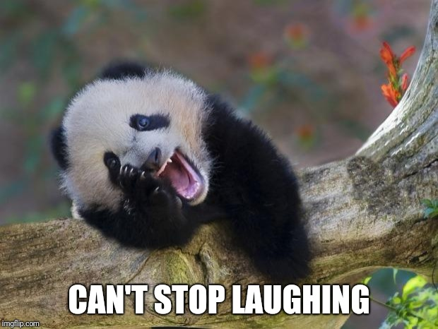 CAN'T STOP LAUGHING | made w/ Imgflip meme maker