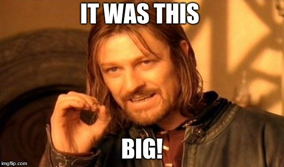 One Does Not Simply Meme | IT WAS THIS BIG! | image tagged in memes,one does not simply | made w/ Imgflip meme maker
