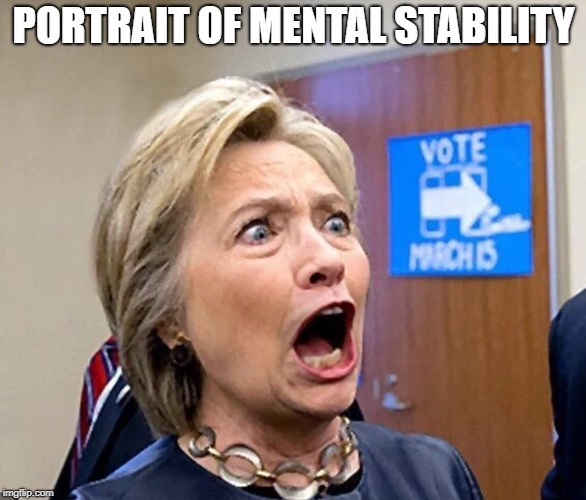PORTRAIT OF MENTAL STABILITY | image tagged in hillary clinton say ahh | made w/ Imgflip meme maker