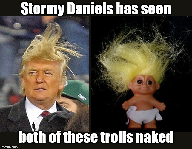 A Bare Truth | Stormy Daniels has seen both of these trolls naked | image tagged in stormy  trump,trump,donald trump,trump hair,donald trump is an douche,trump memes | made w/ Imgflip meme maker