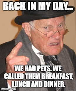 Back In My Day Meme | BACK IN MY DAY... WE HAD PETS. WE CALLED THEM BREAKFAST, LUNCH AND DINNER. | image tagged in memes,back in my day,grandpa,funny | made w/ Imgflip meme maker