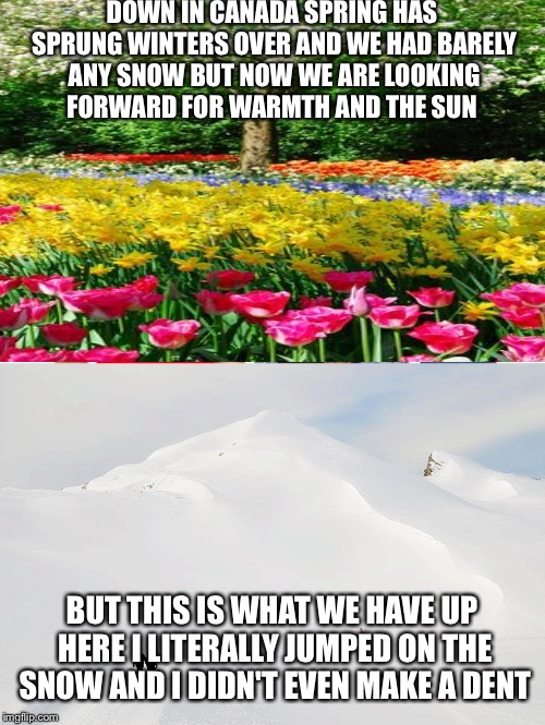 DOWN IN CANADA SPRING HAS SPRUNG WINTERS OVER AND WE HAD BARELY ANY SNOW BUT NOW WE ARE LOOKING FORWARD FOR WARMTH AND THE SUN BUT THIS IS W | image tagged in winter is here,april fools,cold weather | made w/ Imgflip meme maker