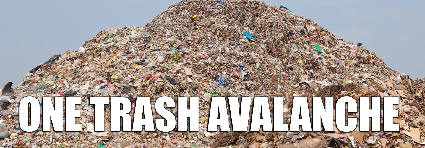 ONE TRASH AVALANCHE | made w/ Imgflip meme maker