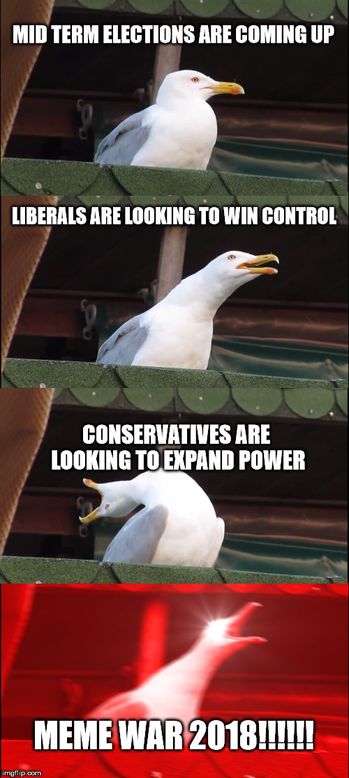 Inhaling Seagull Meme | MID TERM ELECTIONS ARE COMING UP LIBERALS ARE LOOKING TO WIN CONTROL CONSERVATIVES ARE LOOKING TO EXPAND POWER MEME WAR 2018!!!!!! | image tagged in memes,inhaling seagull | made w/ Imgflip meme maker