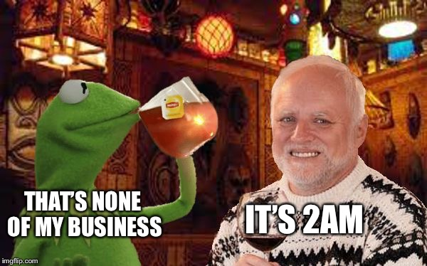Harold and Kermit at the Oasis Lounge | THAT'S NONE OF MY BUSINESS IT'S 2AM | image tagged in harold and kermit at the oasis lounge | made w/ Imgflip meme maker
