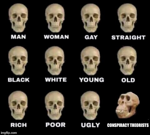 idiot skull | CONSPIRACY THEORISTS | image tagged in idiot skull | made w/ Imgflip meme maker
