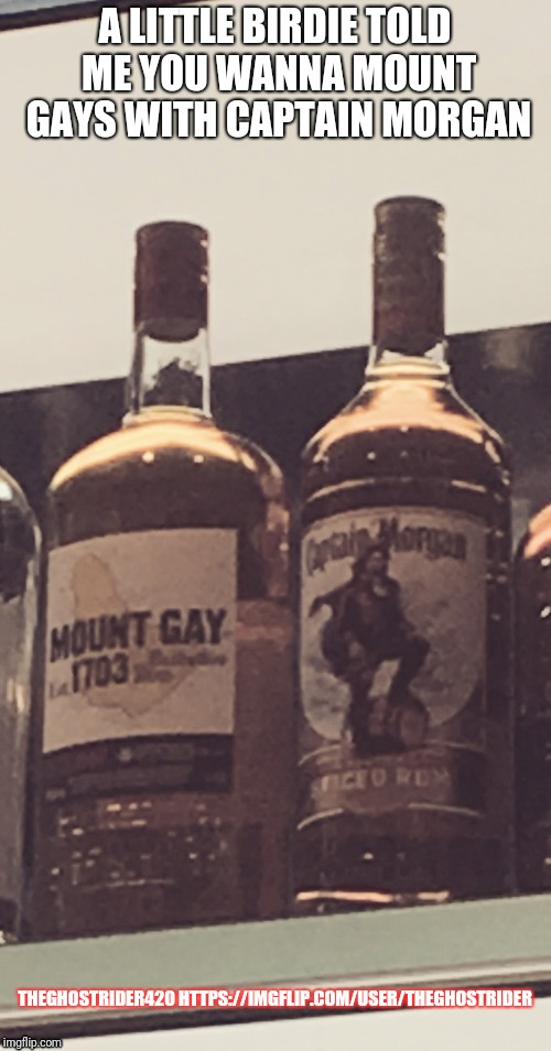 Do what? | A LITTLE BIRDIE TOLD ME YOU WANNA MOUNT GAYS WITH CAPTAIN MORGAN THEGHOSTRIDER420 HTTPS://IMGFLIP.COM/USER/THEGHOSTRIDER | image tagged in gay,drinks,bar jokes,funny names,funny meme | made w/ Imgflip meme maker