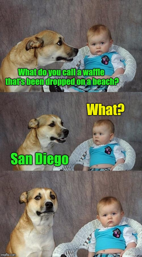 From Dad Jokes | What do you call a waffle that's been dropped on a beach? San Diego What? | image tagged in memes,dad joke dog | made w/ Imgflip meme maker