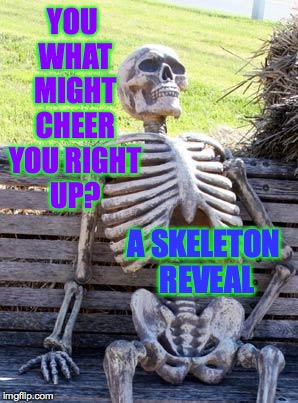 Waiting Skeleton Meme | YOU WHAT MIGHT CHEER YOU RIGHT UP? A SKELETON REVEAL | image tagged in memes,waiting skeleton | made w/ Imgflip meme maker