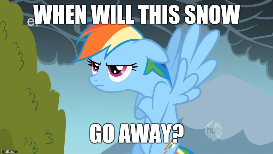 Grumpy Pony | WHEN WILL THIS SNOW GO AWAY? | image tagged in grumpy pony | made w/ Imgflip meme maker