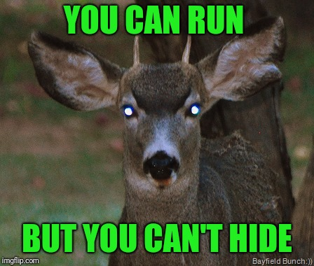 YOU CAN RUN BUT YOU CAN'T HIDE | made w/ Imgflip meme maker