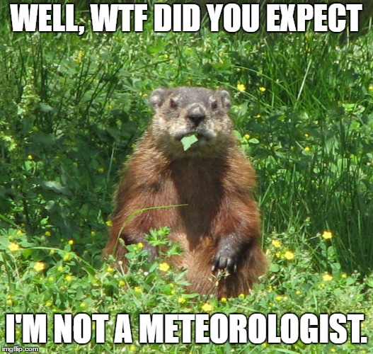 Expecting an inch of snow tonight.  | WELL, WTF DID YOU EXPECT I'M NOT A METEOROLOGIST. | image tagged in ground hog eating,random | made w/ Imgflip meme maker