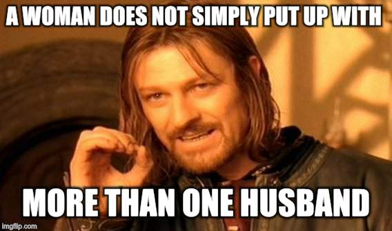 One Does Not Simply Meme | A WOMAN DOES NOT SIMPLY PUT UP WITH MORE THAN ONE HUSBAND. | image tagged in memes,one does not simply | made w/ Imgflip meme maker