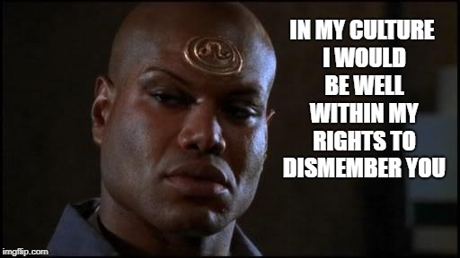 Teal'C Stargate SG-1 My Culture | IN MY CULTURE I WOULD BE WELL WITHIN MY RIGHTS TO DISMEMBER YOU | image tagged in stargate teal'c,stargate sg-1,teal'c,christopher judge | made w/ Imgflip meme maker