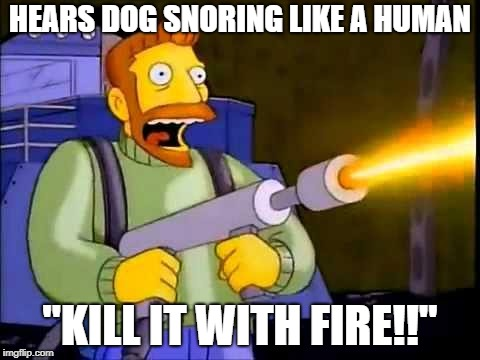 "Kill it with fire | HEARS DOG SNORING LIKE A HUMAN ""KILL IT WITH FIRE!!"" 