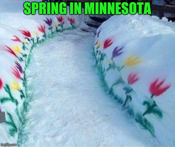 Inspired by Minnesota friends | SPRING IN MINNESOTA | image tagged in spring,snow,minnesota,pipe_picasso | made w/ Imgflip meme maker