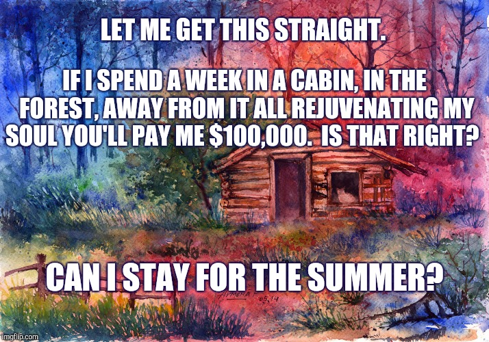 Cabin In The Woods | LET ME GET THIS STRAIGHT. IF I SPEND A WEEK IN A CABIN, IN THE FOREST, AWAY FROM IT ALL REJUVENATING MY SOUL YOU'LL PAY ME $100,000.  IS THA | image tagged in forest,rest | made w/ Imgflip meme maker