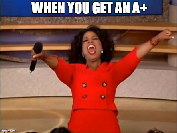 Oprah You Get A Meme | WHEN YOU GET AN A+ | image tagged in memes,oprah you get a | made w/ Imgflip meme maker