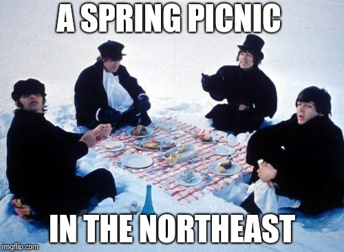Canadian picnic | A SPRING PICNIC IN THE NORTHEAST | image tagged in canadian picnic | made w/ Imgflip meme maker