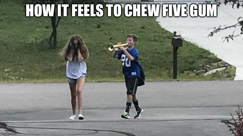 Trumpet Boy Object Labeling | HOW IT FEELS TO CHEW FIVE GUM | image tagged in trumpet boy object labeling | made w/ Imgflip meme maker