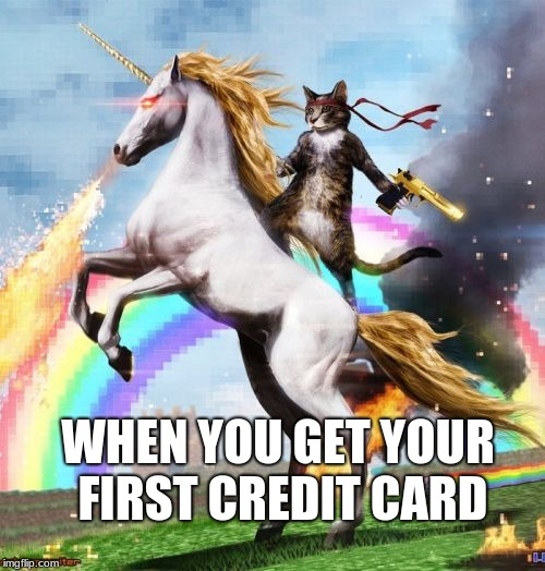 Welcome To The Internets Meme | WHEN YOU GET YOUR FIRST CREDIT CARD | image tagged in memes,welcome to the internets | made w/ Imgflip meme maker