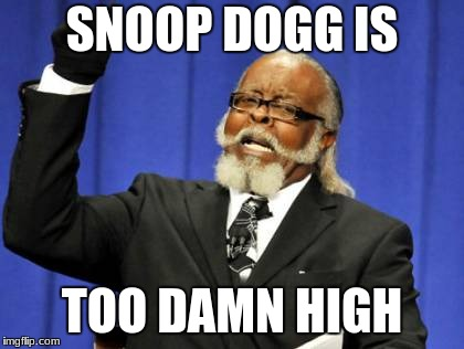 Too Damn High |  SNOOP DOGG IS; TOO DAMN HIGH | image tagged in memes,too damn high,snoop dogg | made w/ Imgflip meme maker