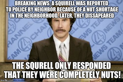 Ron Burgundy Meme | BREAKING NEWS: A SQUIRELL WAS REPORTED TO POLICE BY NEIGHBOR BECAUSE OF A NUT SHORTAGE IN THE NEIGHBORHOOD. LATER, THEY DISSAPEARED THE SQUR | image tagged in memes,ron burgundy | made w/ Imgflip meme maker