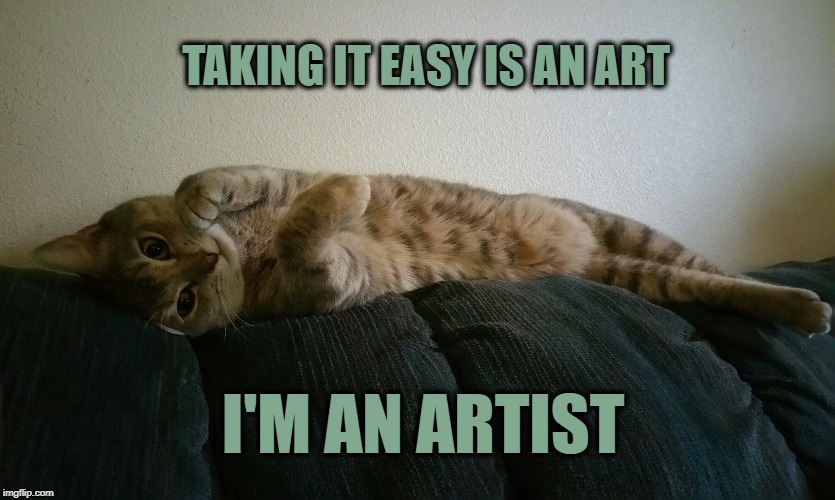 TAKING IT EASY IS AN ART I'M AN ARTIST | image tagged in funny cat,cat,relax,i should buy a boat cat,take it easy,artistic | made w/ Imgflip meme maker