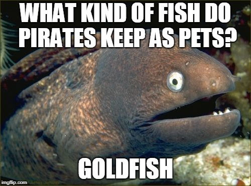Bad Joke Eel Meme | WHAT KIND OF FISH DO PIRATES KEEP AS PETS? GOLDFISH | image tagged in memes,bad joke eel | made w/ Imgflip meme maker