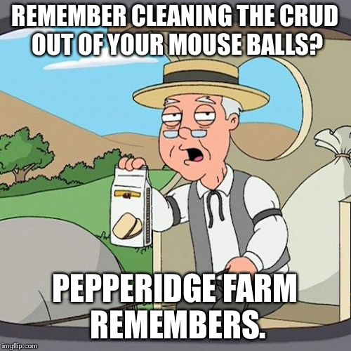Pepperidge Farm Remembers Meme | REMEMBER CLEANING THE CRUD OUT OF YOUR MOUSE BALLS? PEPPERIDGE FARM REMEMBERS. | image tagged in memes,pepperidge farm remembers | made w/ Imgflip meme maker