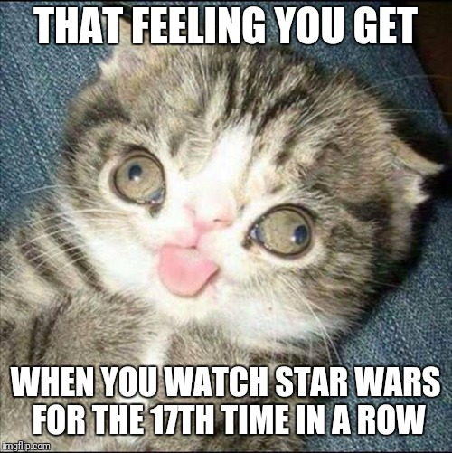 THAT FEELING YOU GET WHEN YOU WATCH STAR WARS FOR THE 17TH TIME IN A ROW | image tagged in derp cat | made w/ Imgflip meme maker
