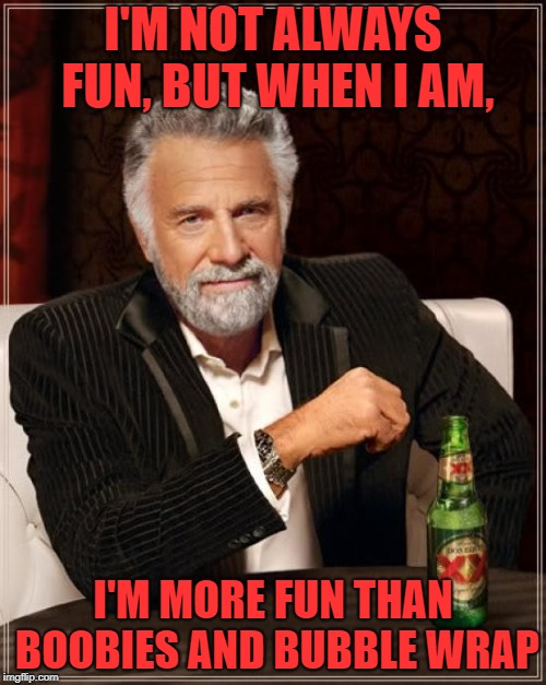 Fun times, Fun times | I'M NOT ALWAYS FUN, BUT WHEN I AM, I'M MORE FUN THAN BOOBIES AND BUBBLE WRAP | image tagged in memes,the most interesting man in the world | made w/ Imgflip meme maker