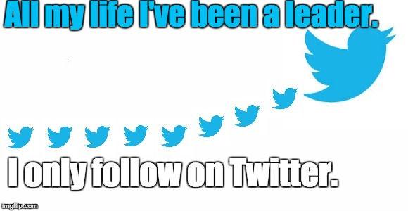 Twitter Follower | All my life I've been a leader. I only follow on Twitter. | image tagged in leader independent | made w/ Imgflip meme maker