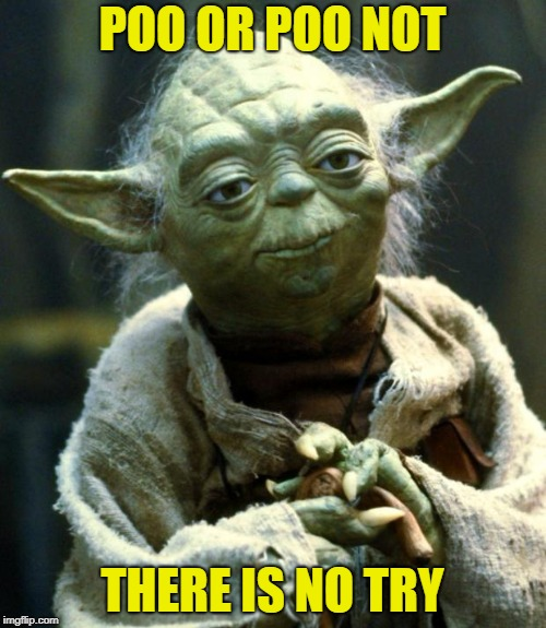 Star Wars Yoda Meme | POO OR POO NOT THERE IS NO TRY | image tagged in memes,star wars yoda | made w/ Imgflip meme maker