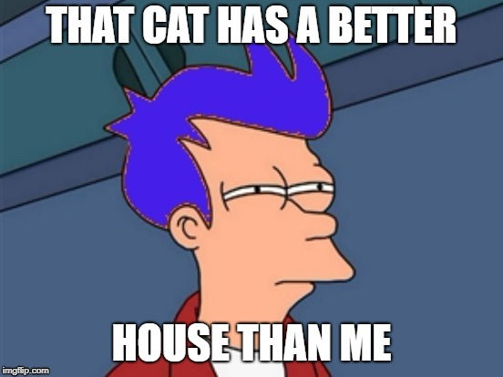 THAT CAT HAS A BETTER HOUSE THAN ME | made w/ Imgflip meme maker