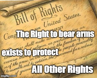 Protect Rights | The Right to bear arms exists to protect All Other Rights | image tagged in bill of rights,gun rights,2nd amendment,constitution,gun control | made w/ Imgflip meme maker