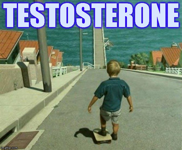Behold The Power Of... | TESTOSTERONE | image tagged in danger,male,men,boys,manly,risk | made w/ Imgflip meme maker