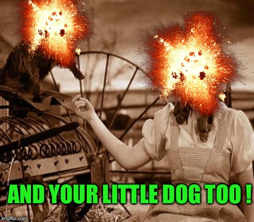AND YOUR LITTLE DOG TOO ! | made w/ Imgflip meme maker