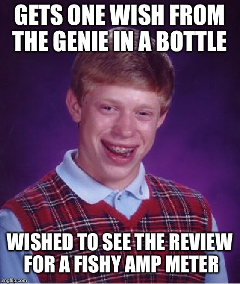 Bad Luck Brian Meme | GETS ONE WISH FROM THE GENIE IN A BOTTLE WISHED TO SEE THE REVIEW FOR A FISHY AMP METER | image tagged in memes,bad luck brian | made w/ Imgflip meme maker