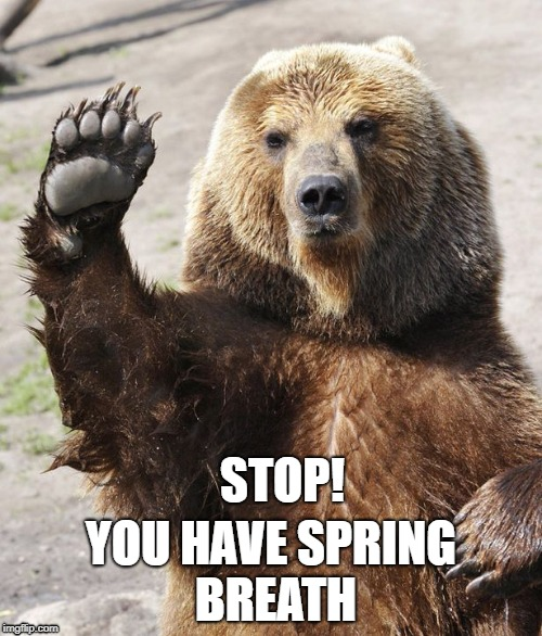 STOP! YOU HAVE SPRING BREATH | image tagged in safety | made w/ Imgflip meme maker