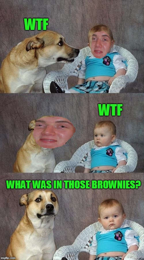 WTF WTF WHAT WAS IN THOSE BROWNIES? | made w/ Imgflip meme maker