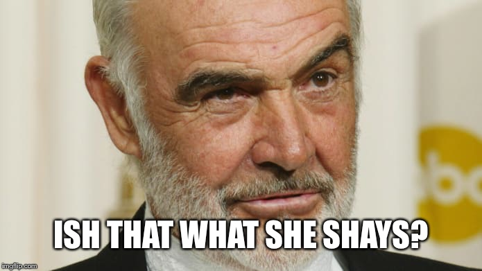 ISH THAT WHAT SHE SHAYS? | made w/ Imgflip meme maker