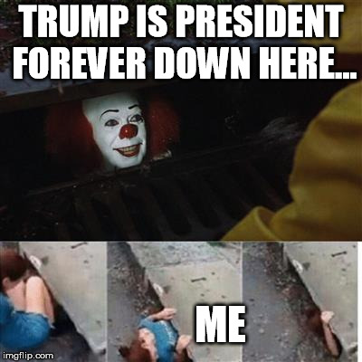 pennywise in sewer | TRUMP IS PRESIDENT FOREVER DOWN HERE... ME | image tagged in pennywise in sewer | made w/ Imgflip meme maker