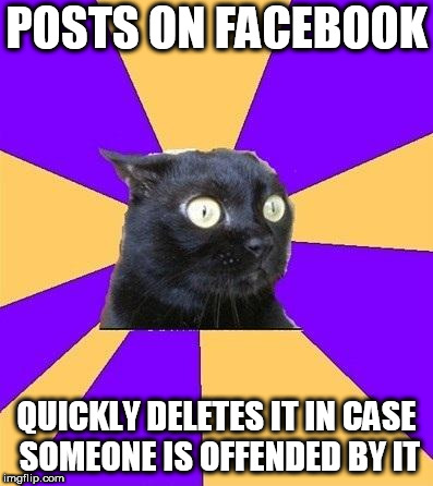 anxiety cat | POSTS ON FACEBOOK QUICKLY DELETES IT IN CASE SOMEONE IS OFFENDED BY IT | image tagged in anxiety cat | made w/ Imgflip meme maker