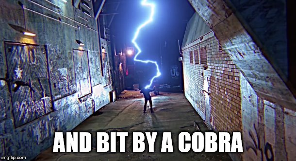 AND BIT BY A COBRA | made w/ Imgflip meme maker