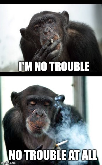 I'M NO TROUBLE NO TROUBLE AT ALL | made w/ Imgflip meme maker