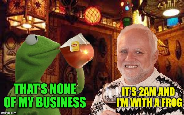 Harold and Kermit at the Oasis Lounge | IT'S 2AM AND I'M WITH A FROG THAT'S NONE OF MY BUSINESS | image tagged in harold and kermit at the oasis lounge,memes,hide the pain harold,but thats none of my business,kermit the frog | made w/ Imgflip meme maker