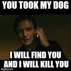 Liam Neeson Taken | YOU TOOK MY DOG I WILL FIND YOU AND I WILL KILL YOU | image tagged in memes,liam neeson taken | made w/ Imgflip meme maker